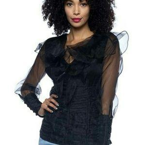 Tops - SALE! Sheer sleeve ruffle dress blouse